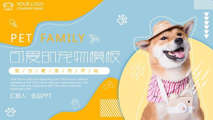 宠物狗狗背景的杂志风宠物店介绍PPT模板