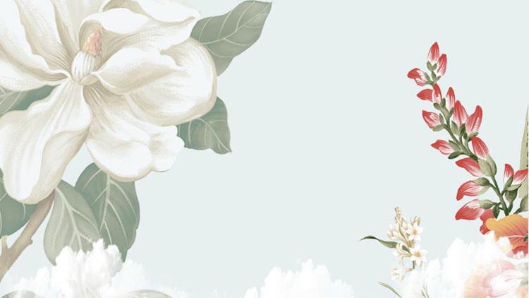 精美清新植物花卉PPT背景圖片